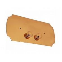 Клавиша смыва Devon&Devon DEPLOT золото